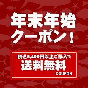 年末年始限定!5,400円以上ご購入で使える送料無料クーポン!