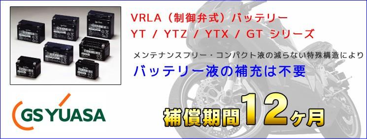 VRLA制御弁式バッテリー