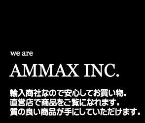 株式会社アムマックス