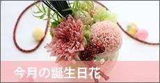 今月の誕生日花