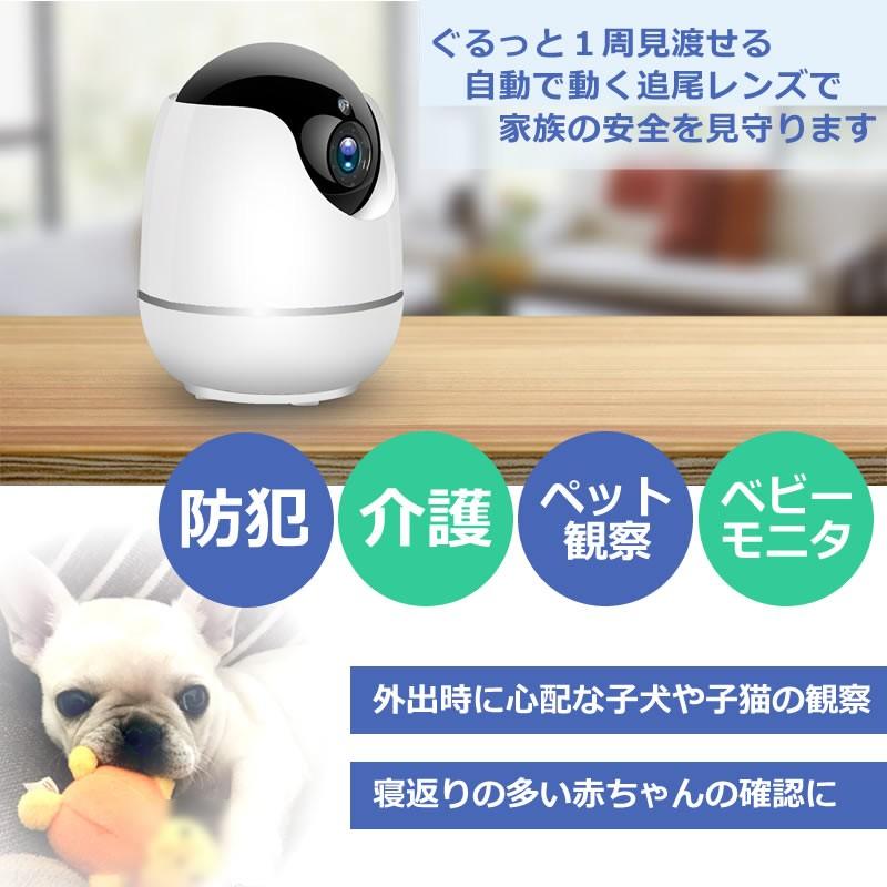 ペットカメラ SDカード録画 家庭用