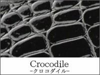 Crocodile -クロコダイル-