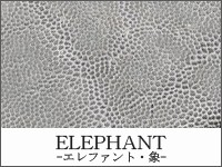 ELEPHANT -象-