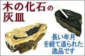 化石の灰皿