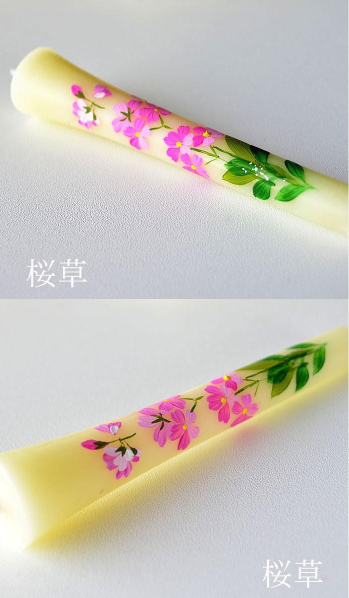 手描き絵ろうそく「桜草」