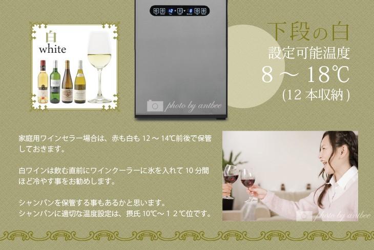 2装式小型ワインセラー