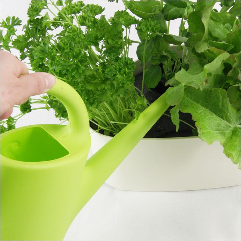 Plastex エバーグリーン ジョウロ 2L プラステックス Evergreen じょうろ ガーデニング 水やり ガーデン 庭 花 植物 EERO AARNIO 北欧 デザイン