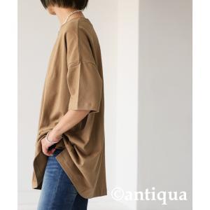トップス Tシャツ メンズ 半袖 綿 クルーネックバスクT・100ptメール便可|antiqua|24