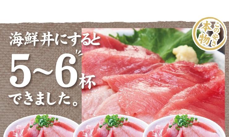 海鮮丼にすると5-6杯