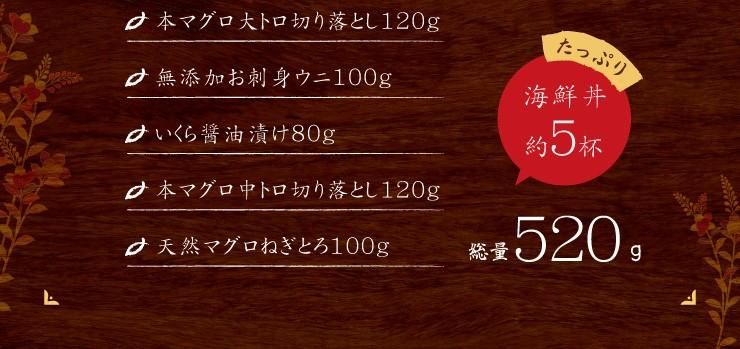 たっぷり海鮮丼約5杯