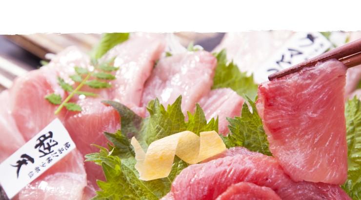 国産本鮪脳天、カマトロ、ほほ肉のお刺身盛合せ