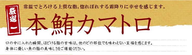 本鮪カマトロ
