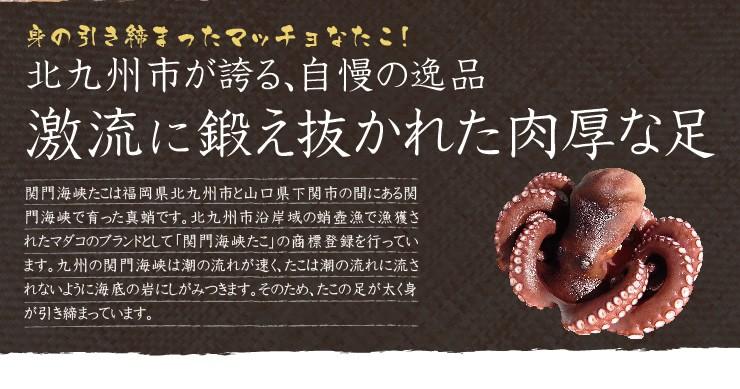 関門海峡ダコは北九州市が誇る、自慢の逸品