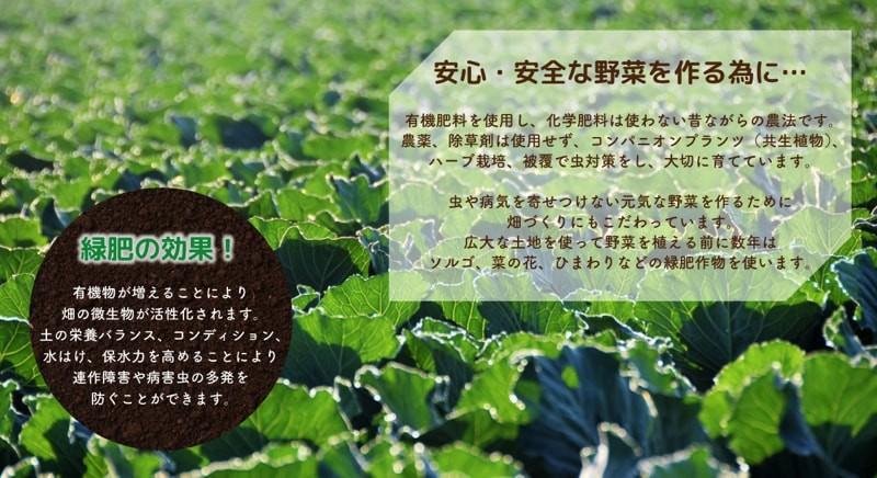 安心安全な野菜を作るために