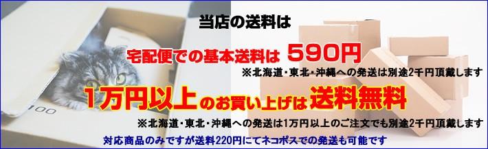 一部地域を除き送料一律590円 1万円以上送料無料