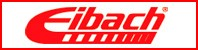 Eibach-Race-Spring-System【ERS