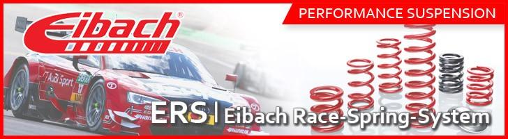 Eibach ERS