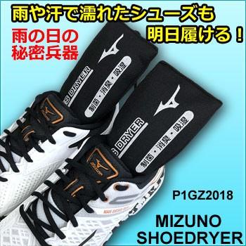 P1GZ201809