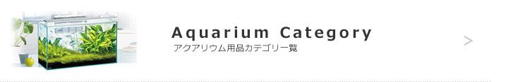 アクアリウムカテゴリーへ