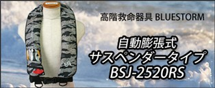 BSJ-2520RS