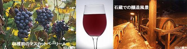 岩の原ワインイメージ