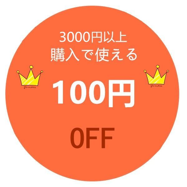 3000円以上ご購入で使える100円OFFクーポン