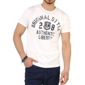 Tシャツ メンズ 吸汗速乾 ドライメッシュ素材 アメカジT カレッジT M L LL 3L 脇汗対策 メンズ トップス メンズファッション Tシャツ カットソー 2021 春 夏|ARCADE