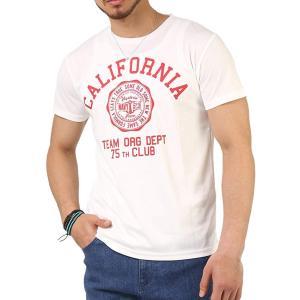 041dab1ab15ae0 Tシャツ メンズ 吸汗速乾 ドライメッシュ素材 アメカジT カレッジT M L LL 3L 脇