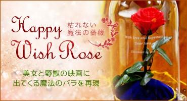 枯れない魔法の薔薇 HappyWishRose