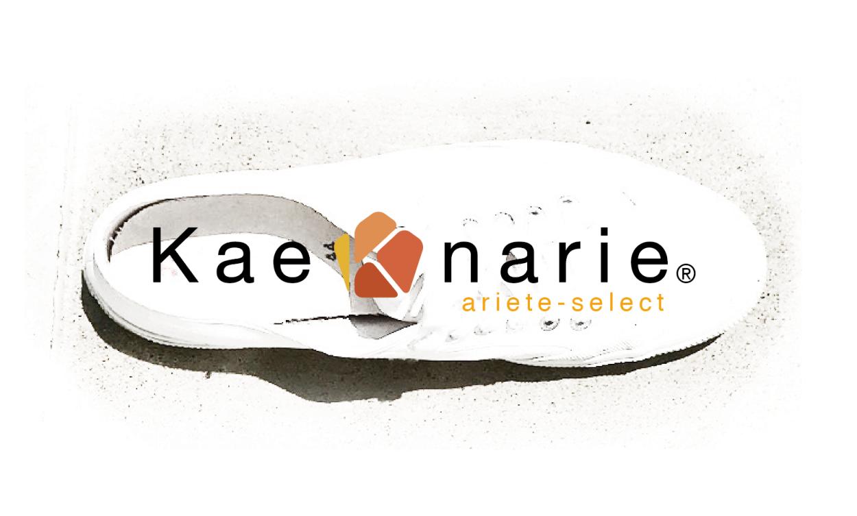 ariete-select