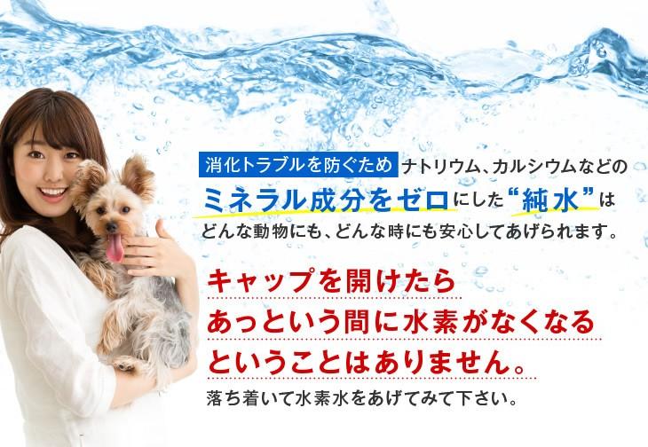 甦り水 ペットの水素水 消化トラブルを防ぐための純水
