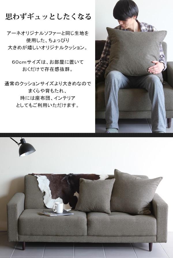 cushion60_sp2.jpg
