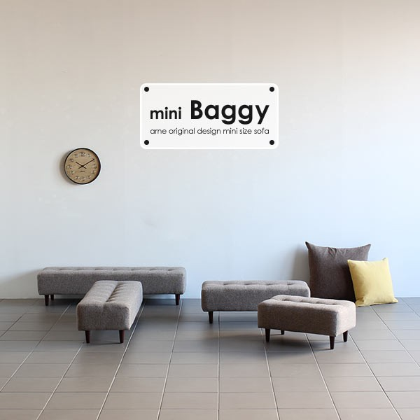 minibaggy1000_sp6.jpg