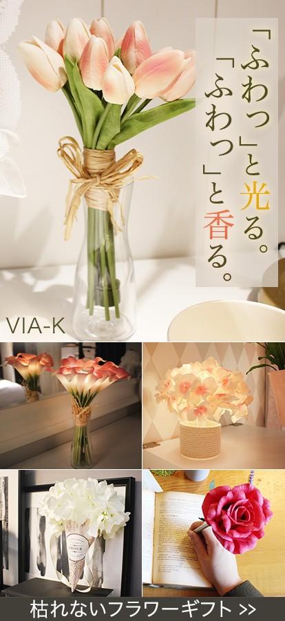 VIA-K