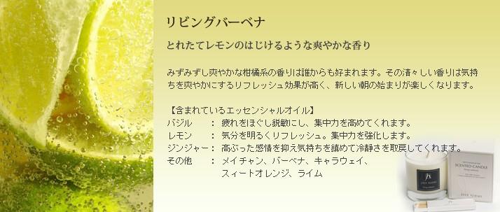 リビングバーベナ(激安アロマキャンドルアウトレットセール訳あり)