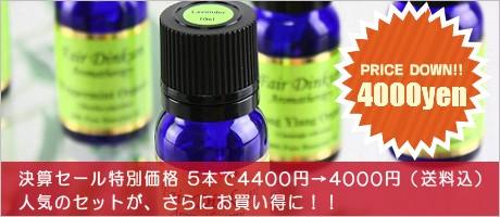 5本セット4000円