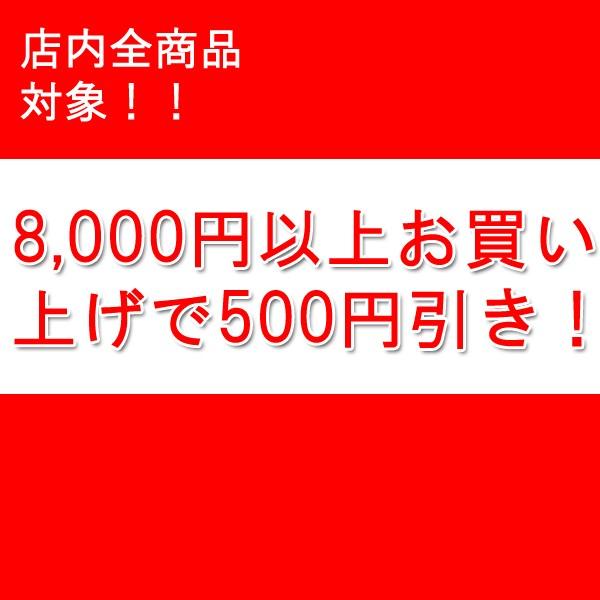 8000円以上で500円引き!