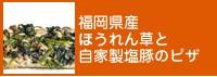 福岡県産ほうれん草と自家製塩豚のピザ