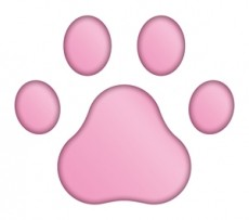 3Dステッカー 肉球Aタイプ/ピンク