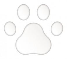 3Dステッカー 肉球Aタイプ/白