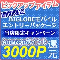BIGLOBE(ビッグローブ) モバイル エントリーパッケージ