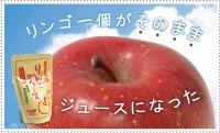 五十嵐りんご