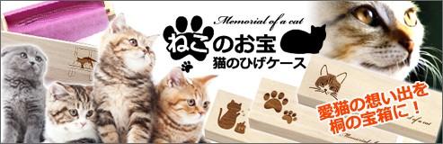 猫のひげケース 桐箱