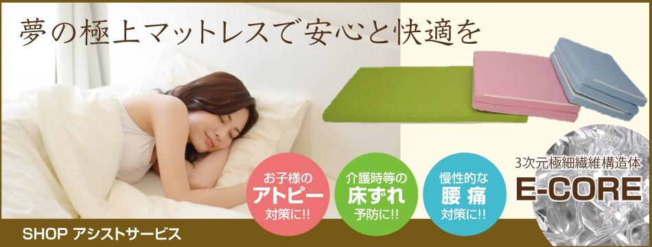 痛・アトピー・防ダニの高反発マットレスE-COREシリーズ