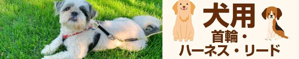 犬用首輪・リード