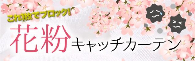 花粉キャッチ