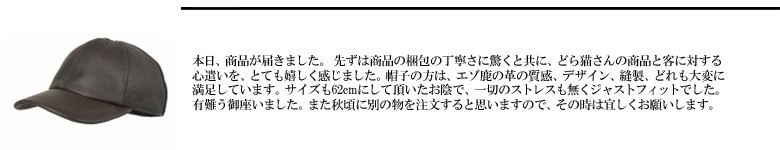 2017/9モニターレビュー2