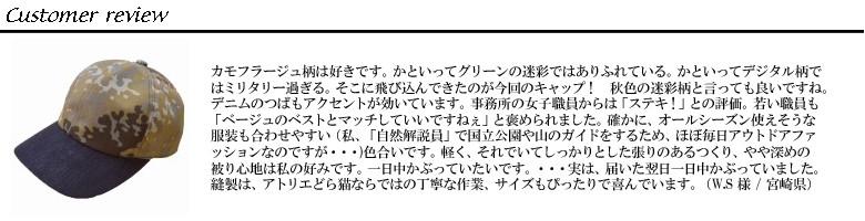 2017/9モニターレビュー