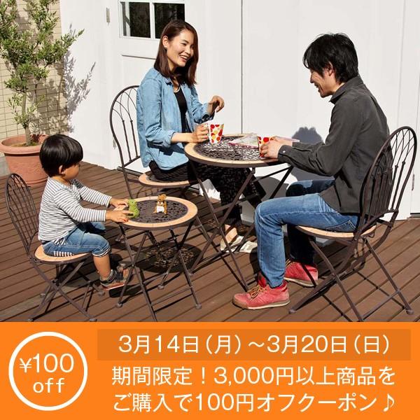 3月14日(月)~3月20日(日)限定!3000円以上ご購入で100円オフクーポン