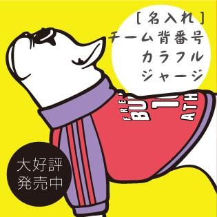 名入れジャージー 犬服 フレンチブルドッグ服